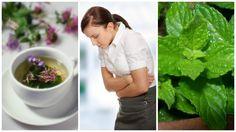 Alivia el síndrome del intestino irritable con estas 5 hierbas curativas