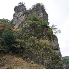 題名未設定 — 萩・長門峡観光遊覧船 (山口県萩市)