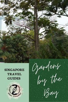 Gardens by the Bay in Singapore - a masterpiece of sustainability and green urbanization.   #sustainability #gardens #singapore #singaporegarden #travelguide #travel #ecofriendly #green #greentravel
