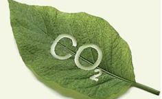 Estudo revela a possibilidade de captura de CO2 da atmosfera por meio de eletrólise