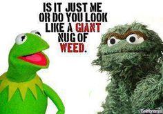 Oscar the Grouch.