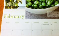 Zone by zone to-do list for gardeners in February