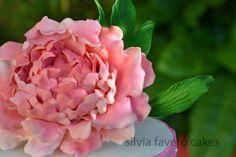 Peonía rosa y hojas de azúcar   Sugar  Pink Peony and leaves.