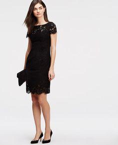 Tall Lace Sheath Dress