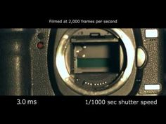 Slow motion video of a Canon 5D Mk II DSLR taking a picture. Shot with a Redlake N3 high speed camera at 2,000 frames per second. You can see the mirror lift up, the shutter curtain open and close, and the mirror drop back down. As you can see, the entire image is not captured at the same instant. Instead, the top of the image is captured before the bottom, although the difference is only a few milliseconds.