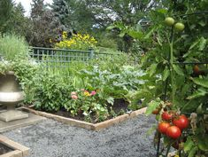 Inspiring Raised Beds for Fall and Spring Planting  							Make Your Next Vegetable Garden Even Better with Beautiful Boxes and Paths    http://www.houzz.com/ideabooks/567723/list/Inspiring-Raised-Beds-for-Fall-and-Spring-Planting#