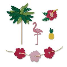 Image result for little b dies tropical