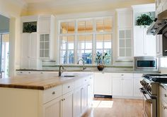 Eurostyle Traditional Kitchen in White with Odessa Doors like the open shelf for plants