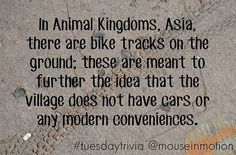 TUESDAY TRIVIA: In Animal Kingdoms, Asia, there are bike tracks on the ground; these are meant to further the idea that the village does not have cars or any modern conveniences. #TuesdayTrivia #MouseInMotion #PutYourDreamsInMotion