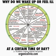 TCM Body Clock: Why Do We Wake Up or Feel Ill at a Certain Time of Day? | Organic Olivia - Bikini Fitness