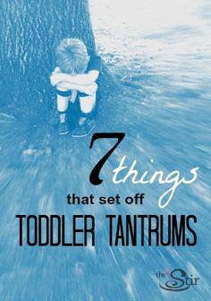 Toddler Tantrums: All the stuff that sets 'em off!