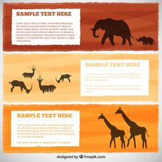 Banner collection with wild animals Free Vector