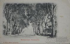 Prentbriefkaart. Opschrift: 'Heerenstraat, Paramaribo H. Esser-Muller, Paramaribo. Datum: Locatie: Paramaribo, Suriname Vervaardiger: Inv. Nr.: 27-124 Fotoarchief Stichting Surinaams Museum