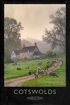 Cotswolds Railway Poster