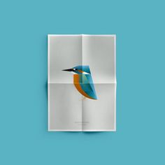 Birds by Manuel Martin from MUT, collection of posters inspired by the birds living in L´Albufera, a natural reserve covering hectares south of Valencia, Spain. Graphic Art, Graphic Design, Bird Poster, Funny Birds, Fauna, Visual Identity, Store Design, Branding Design, Illustration Art