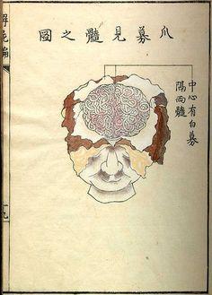 Kaishi Hen (Analysis of Cadavers), Kyoto 1772