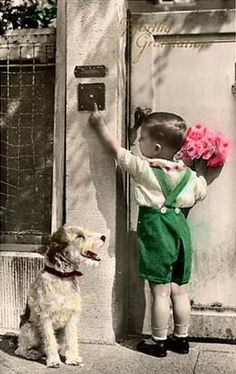 So cute. Boy and dog deliver pink roses.