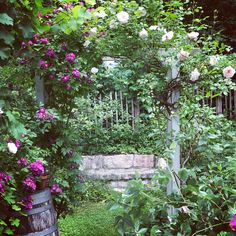 Lieblingspflanzen Vintage Windows, Old Doors, House Made, Gardening, Beautiful Gardens, Outdoor Spaces, Romantic, Architecture, Green