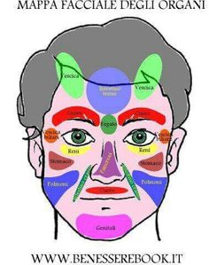 An interesting diagram that shows what can cause acne on different kramer ccuart Gallery