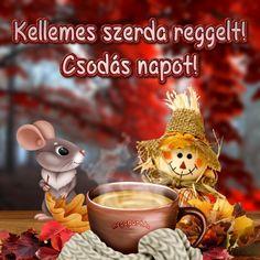 Share Pictures, Animated Gifs, Good Morning, Teddy Bear, Humor, Christmas Ornaments, Halloween, Toys, Holiday Decor