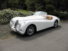 1956 White Jaguar Roadster XK-140.  My goal in life? To one day own this car!