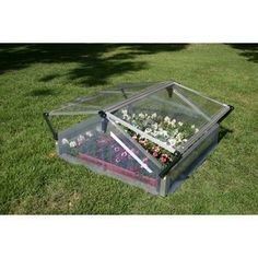 Palram Cold Frame Canada Online At Ca 894275000229