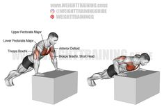Exercise name: Incline push-up on a box. Target muscle: Sternal (Lower) Pectoralis Major. Synergists: Clavicular (Upper) Pectoralis Major, Anterior Deltoid, Triceps Brachii. Dynamic stabilizer: Biceps Brachii (short head only). Mechanics: Compound. Force: Push. Good Back Workouts, Chest Workouts, Back Exercises, Chest Exercises, Shoulder Exercises, Face Pull Exercise, Leg Raise Exercise, Calisthenics Workout Routine, Squat Workout