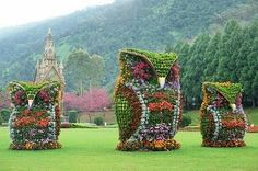 A photo of giant owl garden sculptures in Nantou County, Taiwan took the web by storm. See how animal topiaries can give a garden some eclectic pizazz. Amazing Gardens, Beautiful Gardens, Beautiful Flowers, Beautiful Owl, Garden Owl, Dream Garden, Big Garden, Spring Garden, Giant Flowers