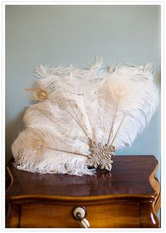 Feather fans for the bridesmaids to carry instead of bouquets!?! @Erin B Young @Mandi Smith T Interiors Johnson @Kandyce Hall