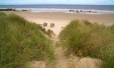 Moray Firth Scotland (Grass and sand by the Moray Firth, where fertile farmland was buried in sand by a persistent storm in October 1694. Photograph: Chris Lauren...)