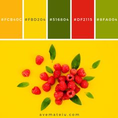 Sweet raspberries with leaves on bright surface. Color Palette Sweet raspberries with leaves on bright surface. Color Palette Palettes Sweet raspberries with leaves on bright surface. Colour Pallette, Colour Schemes, Bright Color Palettes, Yellow Color Combinations, Flat Color Palette, Couleur Hexadecimal, Color Palette Challenge, Raspberry Color, Yellow Background