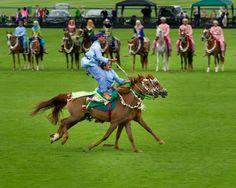Oman Royale Cavalry