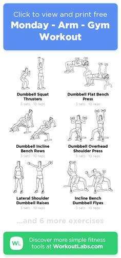 Monday - Arm - Gym Workout · Free workout by WorkoutLabs Fit