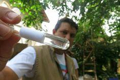 #Aumenta número de focos de dengue em Santa Catarina - O Munícipio: O Munícipio Aumenta número de focos de dengue em Santa Catarina O…