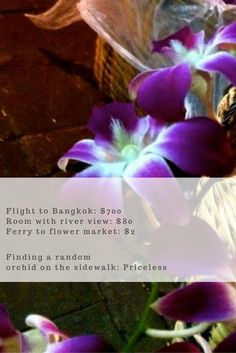 My favorite place in Bangkok? The flower market in the old town! Take a hotel with a view over the Chao Phraya River and come here early to see and smell the magic. Orchids, jasmine, marigolds - you name it. And if you get lucky you might just find a homeless orchid to take home. Click through to read the full story...