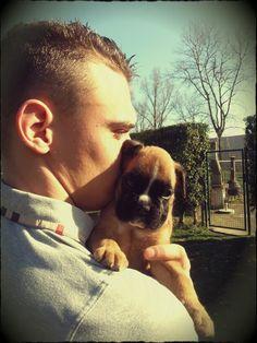 Our little Dexter boxer dog pup