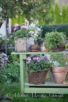 10 måsten i min trädgård | blomsterverkstad