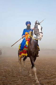 Marwari horse & Traditional Rider, India. I would love to see someone do this garb in an SCA Equestrian event!