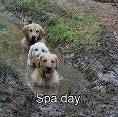 Getting mud packs at the spa.