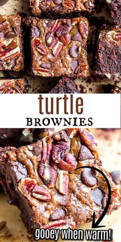 Homemade Brownies topped with gooey caramel, chocolate chips and pecans. Turtle Brownies are a decadent dessert the whole family will love! Brownie Pops, Brownie Toppings, Cookie Brownie Bars, Brownie Recipes, Cookie Recipes, Baking Recipes, Best Dessert Recipes, Sweets Recipes, Fun Desserts