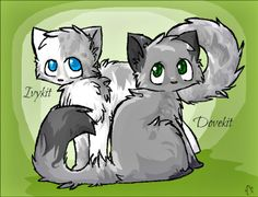 Dovewing and Ivypool as kits. Who do you like more?