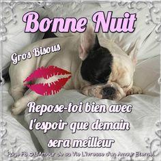 Calin Gif, Good Night, Good Morning, Sleeping Gif, Serum, Communication, Animals, Amour Éternel, Facebook