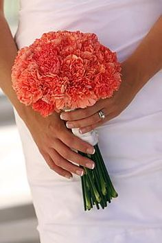 Coral Carnations (this person claimed this is orange but I think it's more pink/coral)
