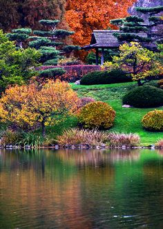 Japanese Garden by the Lake
