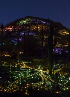 Garden of Light Opens tonight at Royal Botanical Gardens in