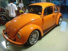 Orange super beetle