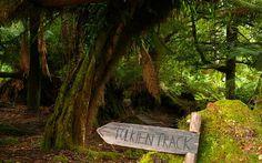IMAGE: Tolkien Track in the Styx | John Sampson