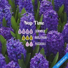 Nap Time - Essential Oil Diffuser Blend