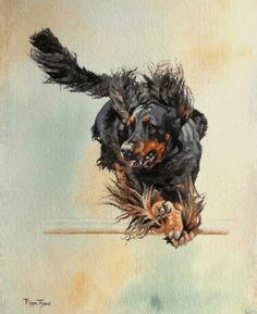Watercolours by Pippa Thew