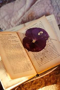 pressing flowers...  This blog has the prettiest pictures!